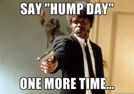 Hump Day Meme - hump day meme database what lol