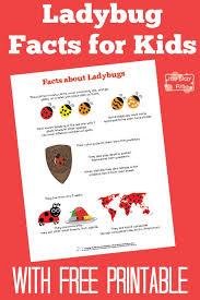 ladybug facts for itsy bitsy