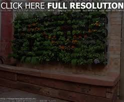 indoor garden ideas videos home outdoor decoration