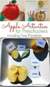 165 best a is for apple preschool themes images on pinterest