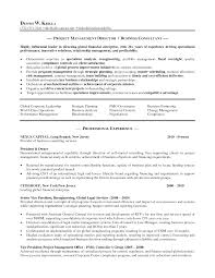 property manager resume example pmo manager resume samples top8pmomanagerresumesamples pmo resume sample example property manager resume technical