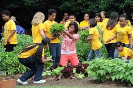 first lady michelle obama u0027s garden grows ny daily news