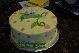 baby shower cake twins in pod cake guru oshkosh wisconsin