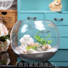 Goldfish Bowl Vase Modern Fish Bowl Images