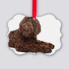 brown labradoodle ornaments cafepress