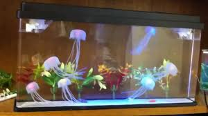 Jellyfish Home Decor by Large Deluxe Jellyfish Aquarium Youtube