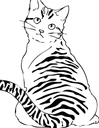 cat coloring pages realistic eliolera