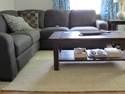 Livingroom Area Rugs Living Room With Jute Rugs Transitional Rugs Contemporary Area Rug