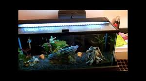 led reef lighting reviews marineland single bright led aquarium light 36 48 review youtube