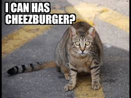 I Can Has Cheezburger Meme - file i can has cheezburger jpg wikimedia commons
