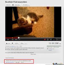 Cute Kitten Memes - cute kitten by saller meme center