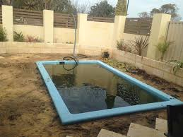 Backyard Pool Cost by Plunge Pool Cost Crafts Home