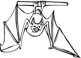 coloring pages of bats at children books online