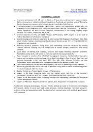 Meeting Deadlines Resume Srikumaranthiruppathy Ls