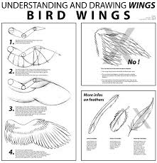 bird wings tutorial by joanniegoulet on deviantart
