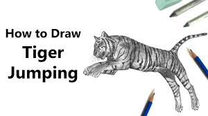 how to draw a tiger jumping with pencils time lapse youtube