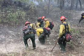 wildfire operations unaffected by trump administration u0027s u0027media