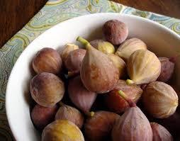ommy noms cucidati sicilian fig cookies