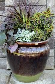 Indoor Container Gardening - garden containers ideas u2013 exhort me