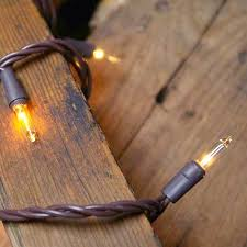 string lights 5 ft battery brown wire warm white