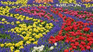 beautiful flower gardens of the world interior design