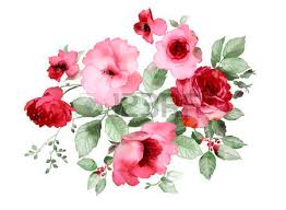 Picture Of Roses Flowers - 160 024 rose flower stock illustrations cliparts and royalty free