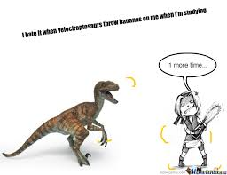 Velociraptor Meme - i hate it when i m studying and a velociraptor throws bananas on