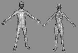 Female Body Reference For 3d Modelling Low Poly Base Meshes Male U0026 Female Opengameart Org
