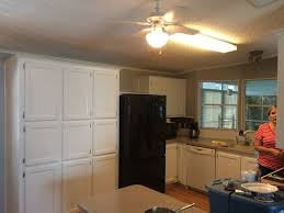 Kitchen Cabinet Painting In Houston TX Painters Refinishing - Kitchen cabinet painters