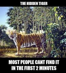 When You See It Meme - the hidden tiger when you see it you can not un see it meme by