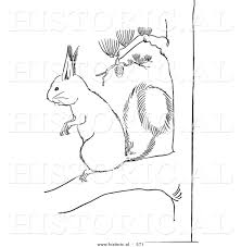 historical vector illustration of a squirrel standing and staring