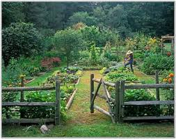 Backyard Vegetable Garden Ideas Vegetable Garden Plans Designs Wooden Fence Garden Paths Patio