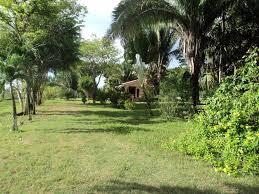 cheap homes in belize beautiful home on 1 acre in belmopan
