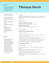 Work Experience Resume Format For It by Professional Resume Format Template Resume For Your Job Application