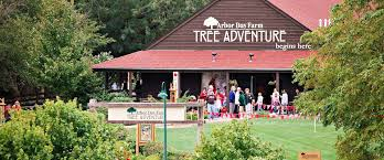 explore the tree adventure at arbor day farm