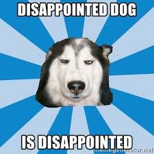 Disappointed Dog Meme - disappointed dog meme