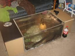 fish tank coffee table diy coffee table fish tank coffee table my aquarium stingrays youtube