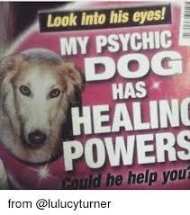 Psychic Meme - psychic meme 28 images i m not psychic you quack by assier17