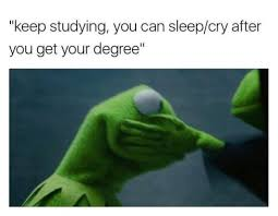 Studying Memes - 10 accurate memes that fully sum up exam week