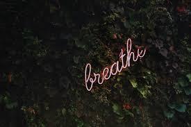 discover calm spire breath and activity tracker
