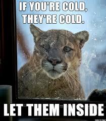 Cold Outside Meme - baby it s cold outside meme on imgur
