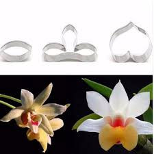 Baking Decorating Aliexpress Com Buy Cookie Cutters Dendrobium Orchid Petal