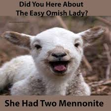 Funny Goat Memes - 17 best funny baby goat quotes memes and puns images on pinterest