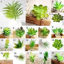 mini plants simulation mini plastic miniature succulents plants garden home