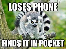 Lemur Meme - funny for lemur meme funny www funnyton com