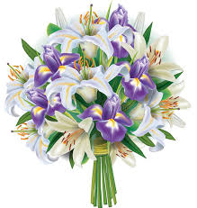 bouquet of lilies bouquet of lilies and irises stock vector illustration of