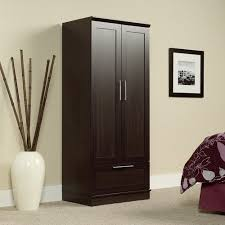 Cd Storage Cabinet With Doors by Storage Cabinets With Doors