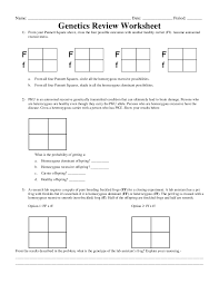 genetics worksheet answers 28 images 14 best images of