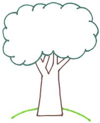 laurrie u0027s garden diary thinking part three new trees