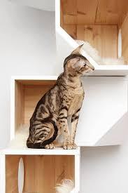 catissa cat tree doubles as stylish wall art 6sqft